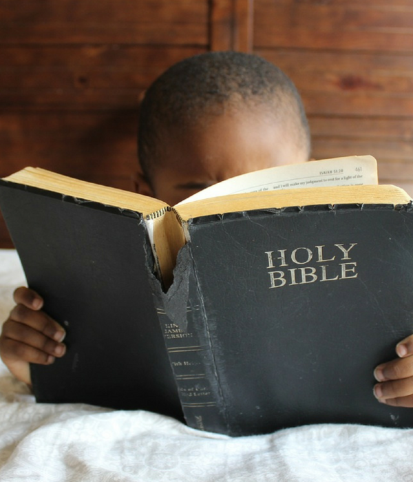 Venture Into the Bible